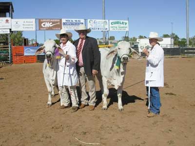 John Mawhinney, Elders Winton (centre) presented the championship sashes for the Calf Champion Female, Kenrol Serengetti held by Wendy Cole and Reserve Calf Champion Female, Kenrol Lady Nan held by Tara Dieckmann