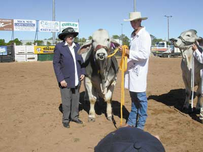 ABBA Life Member Maureen Olive, Nullegai, Marlborough sashed the Calf Champion Bull, MCL Diamond Dealer held by Craig McLennan