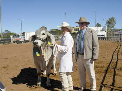 Harold McMillan, Mt Roseby Station, Cloncurry sashed the Reserve Calf Champion Bull Kenrol Marri Manso held by Wendy Cole