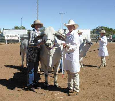 Lyn Coombe, Roxborough Stud, Moura sashed the Senior Champion Female, Kenrol Condaleesa held by Wendy Cole