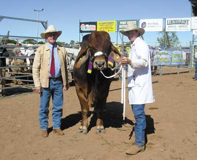 John Atkinson, Laguna Brahmans, Proserpine sashed the Senior Champion Bull, Palmvale Absolute Sting held by Brent Williams