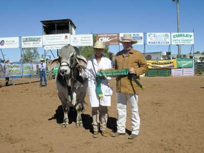 Jack Morris, Stanbroke Pastoral Co, Fort Constantine, Cloncurry presented the Reserve Senior Championship sash won by Elrose Pharoah who was being held by Lorena Jefferis
