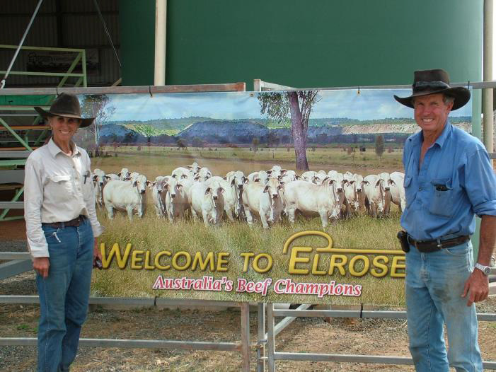 Rodger and Lorena Jefferie with banner of registered brahman females for sale